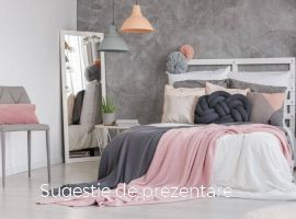 Vanzare  apartament  cu 3 camere Iasi, Boureni (Targu Frumos)  - 38000 EURO