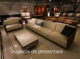 Vanzare  casa  4 camere Timis, Sanandrei  - 450000 EURO