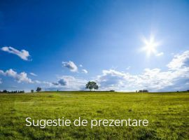 Vanzare  terenuri constructii  1200 mp Hunedoara, Vetel  - 8400 EURO
