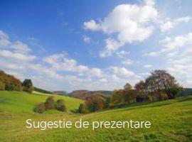 Vanzare  terenuri constructii  2900 mp Salaj, Tihau  - 8400 EURO
