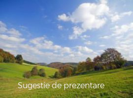 Vanzare  terenuri constructii Salaj, Ileanda  - 15000 EURO