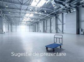 Vanzare  spatii industrial Braila, Comaneasca  - 55000 EURO