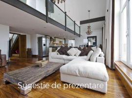 Inchiriere  hoteluri/pensiuni Hunedoara, Rau de Mori  - 1 EURO lunar