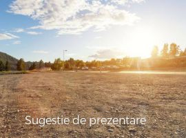 Vanzare  terenuri agricol Valcea, Stoenesti  - 0 EURO