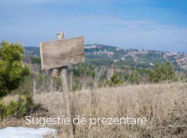 Vanzare  terenuri agricol Dambovita, Ulmi  - 30000 EURO