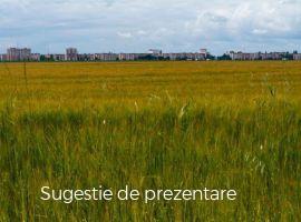 Vanzare  terenuri agricol  22.2 ha Dambovita, Ulmi  - 10500 EURO