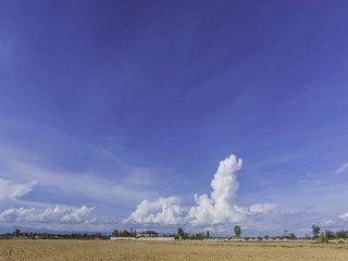 Vanzare  terenuri agricol  285 mp Olt, Corabia  - 330 EURO