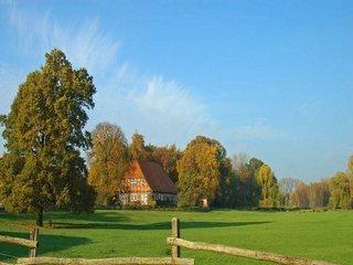 Vanzare  terenuri agricol  11.1 ha Timis, Izvin  - 854700 EURO